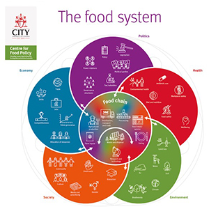 Fig 1: Circular map of the food system, with flows connecting the food chain with the environment, economy, society, health, and politics (Parsons et al. 2019).