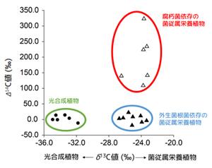 図4. 独立栄養植物と菌従属栄養植物のδ13C値(光合成依存度の指標)とΔ14C値の比較