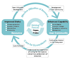 "Figure 2 Conceptual model of the ""Area-capability Cycle"""