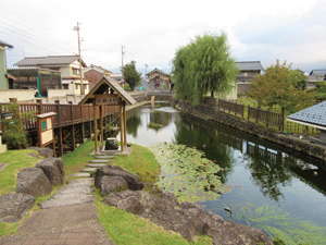 Photo 1 Hongan-Shozu pond in Ono City, Fukui, recharged by ground water
