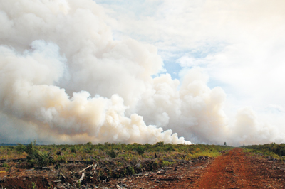 Recent land development activities in some parts of tropical peatlands have led to unpreceded scales of forest fire incidents, which are a serious health threat to people of local areas and neighboring countries. This photograph shows a peatland fire in Riau Province, Sumatra Island, Indonesia.