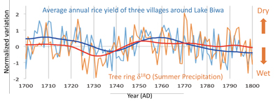 A normalized account of estimated rice yields based on village tax accounts among three villages around Lake Biwa and tree-ring cellulose oxygen isotope ratios taken in central Japan during the 18th century. These data demonstrate that flooding was the most significant factor negatively affecting rice yields in the area at this time.