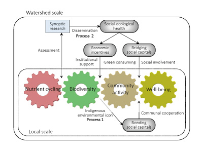 Figure 2 A working hypothesis of how biodiversity, nutrient cycling and human well-being are enhanced through the adaptive watershed governance