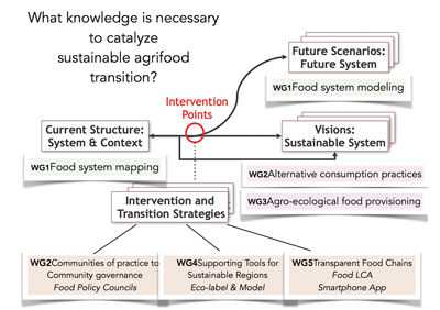 "Figure 1 Diagram detailing how each FEAST working group is organized around the question of ""What knowledge is necessary to catalyze sustainable agrifood transition?"" Four kinds of knowledge are listed: 1) Current system and contextual knowledge; 2) Visions of sustainable future systems knowledge; 3) Future system scenario knowledge; and 4) Knowledge associated with intervention and transition strategies."