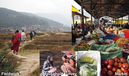 Photo 3 Community and market fieldwork as well as household surveys in Bhutan.