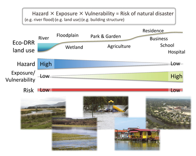 Figure 1 Ecosystem-based disaster risk reduction not only lowers disaster risks but also enhances benefits of ecosystem services by reducing the exposure of human activities in high-hazard locations and supporting human activities in low-hazard locations.
