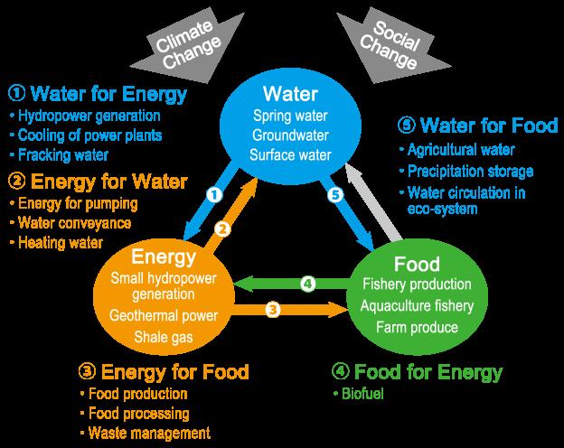 Water Energy Food Nexus